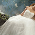 Fairytale Princess Wedding Dress ♥ The Cinderella Gown