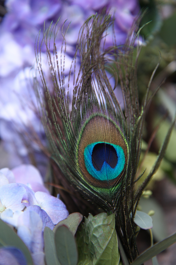 Peacock Feather Inspired Wedding