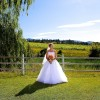 Canadian Winery Wedding by Drew Gregory Photography