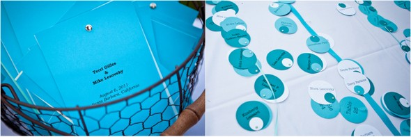 Aqua Blue Wedding Details
