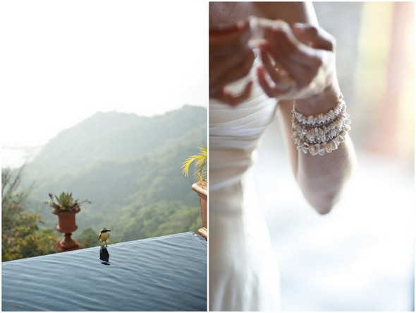Eco Friendly Costa Rica Wedding
