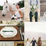 Elegant Horse Wedding Theme