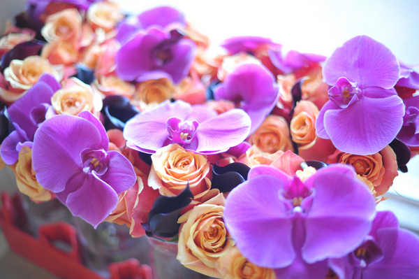 Purple Orchids for Wedding