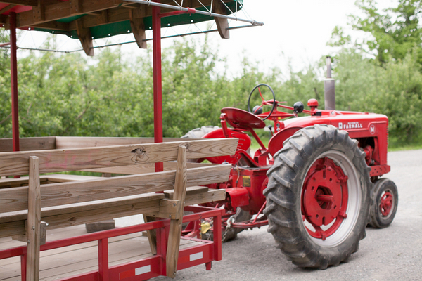 red tractor County Line Orchard Wedding by Jordan Quinn Photography