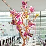 manzanita-branches-for-weddings