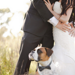Rustic After Wedding Photo Shoot by Mustard Seed Photography